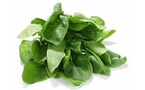 """""""Hey, do we have any spinach?"""""""