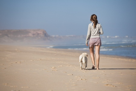 10945242 - young woman walking with her dog on the beach